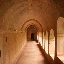 abbaye thoronet allee3