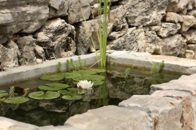 farniente devant le bassin